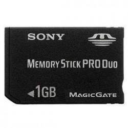 Memory Stick 1Go